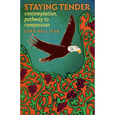 Staying Tender  - contemplation, pathway to compassion